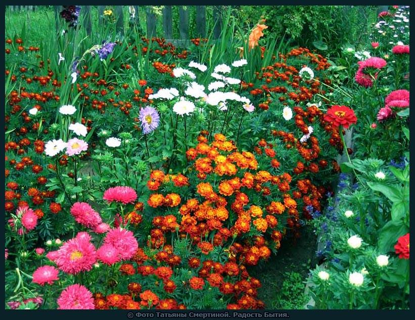 Гном для сада сделать своими руками